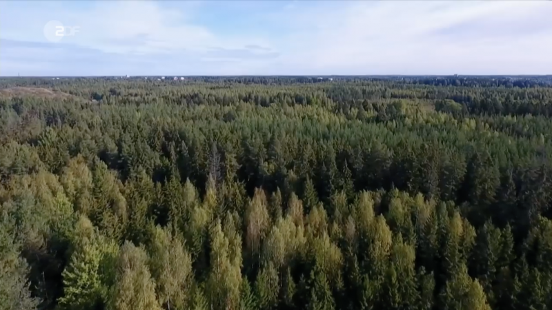 ZDF Finnish Forest Industry